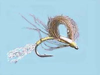 CDC loopwing emerger P.M.D